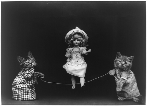 dolls and kittens